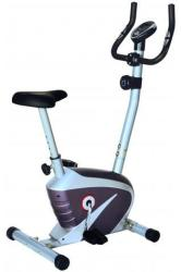 Robust Prisma Bike