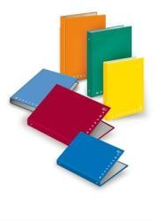 Pigna Monocromo Gyűrűs könyv 4 gyűrű 45 mm A4 karton vegyes (PIGMON201)