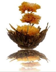 Virágzó tea 1