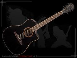 Fender F-1020S