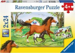 Ravensburger Lovak világa 2x24 db-os