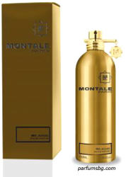 Montale Mr. Aoud EDP 100ml