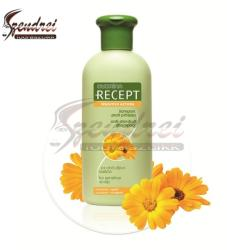 Lady STELLA Oliva Beauty Recept sampon korpa ellen sensitive 400ml