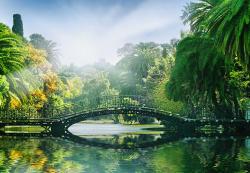 BeeStick Fototapet Bridge in the sunlight - 366x254 cm (00132__AGW)