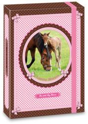 Ars Una My Horse lovas irattartó doboz A4 rózsaszín-barna (90856785)
