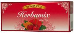 Herbária Herbamix Tea 25 Filter