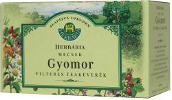 Herbária Mecsek Gyomor Teakeverék 25 Filter