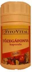Fitovital Tőzegáfonya - 60db