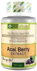 HERBioticum Acai Berry Extract - Acai bogyó kivonat kapszula 60db