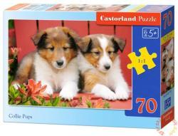 Castorland Collie kutyakölykök 70 db-os (B-007141)