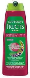 Garnier Fructis Color Resist erősítő sampon festett hajra 250ml