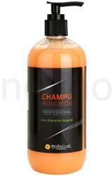 Brische Plant Placenta sampon hajhullás ellen (Anti Hair Loss Shampoo) 500ml
