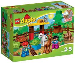 LEGO Duplo - Az erdő - Állatok (10582)