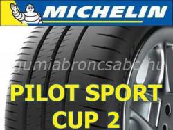 Michelin Pilot Sport Cup 2 XL 325/25 R20 101Y