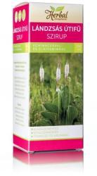 InnoPharm Herbal Lándzsás útifű szirup echinaceával és C-vitaminnal 150ml
