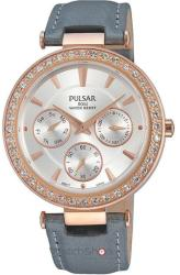 Pulsar PP616 X1