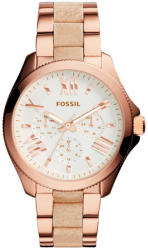 Fossil Cecile AM462