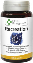 REG Program ReCreation - 120db