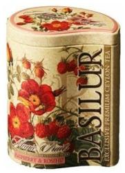 BASILUR Magic Fruits Málna Tea 100g
