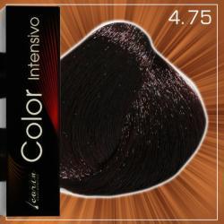 Carin Haircosmetics Color 4.75 Hajfesték 100ml