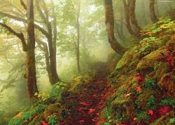 Heye Magic Forests - Path 1000 db-os (29519)
