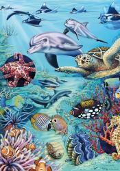 Heye Tropical Waters 500 db-os