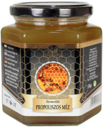 Hungary Honey Propoliszos Méz 500g
