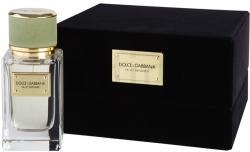 Dolce&Gabbana Velvet Bergamot EDP 50ml
