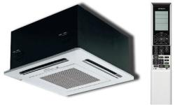 Hitachi RAI50QPB / RAIECPP