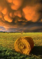 Heye Rising Storm - Vihar 1000 db-os (29550)