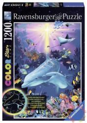 Ravensburger Color Neon A tenger alatt 1200 db-os (16184)