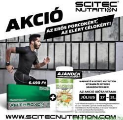 Scitec Nutrition Arthroxon (105db)