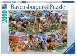 Ravensburger Nemzeti parkok képeslapokon 2000 db-os (16697)