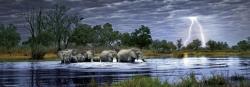 Heye Herd of Elephants (Edition Humboldt) 2000 db-os