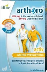 Hübner Arthoro Activ (90db)