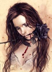 Heye Dark Rose 1000 db-os