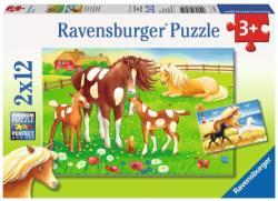 Ravensburger Lovak 2x12 db-os