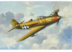 Revell Micro Wings P-39Q Airacobra 1/144 4935