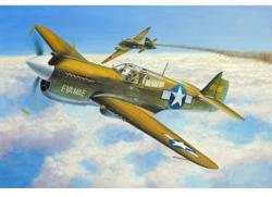Revell Micro Wings P-40E Warhawk 1/144 4932