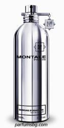 Montale Embruns d´Essaouira EDP 100ml Tester
