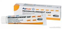 Aptus Reconvalescent Cat paszta 30g