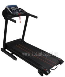 FitTronic MT06