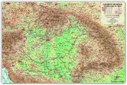 Nyír-Karta Kárpát-medence domborzata és vizei falitérkép, könyöklő Nyír-Karta 70x50 cm