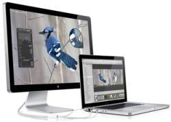 Apple LED Cinema Display 24 HD (MB382)
