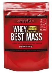 ACTIVLAB Whey Best Mass 1000g
