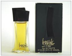Jean Louis Imagine EDT 100ml