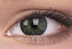 Maxvue Vision Elegance - Gray - dioptriás, negyedéves (2 db)