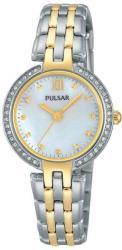 Pulsar PH8166X1