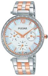 Pulsar PP6213X1