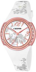 Calypso K5639